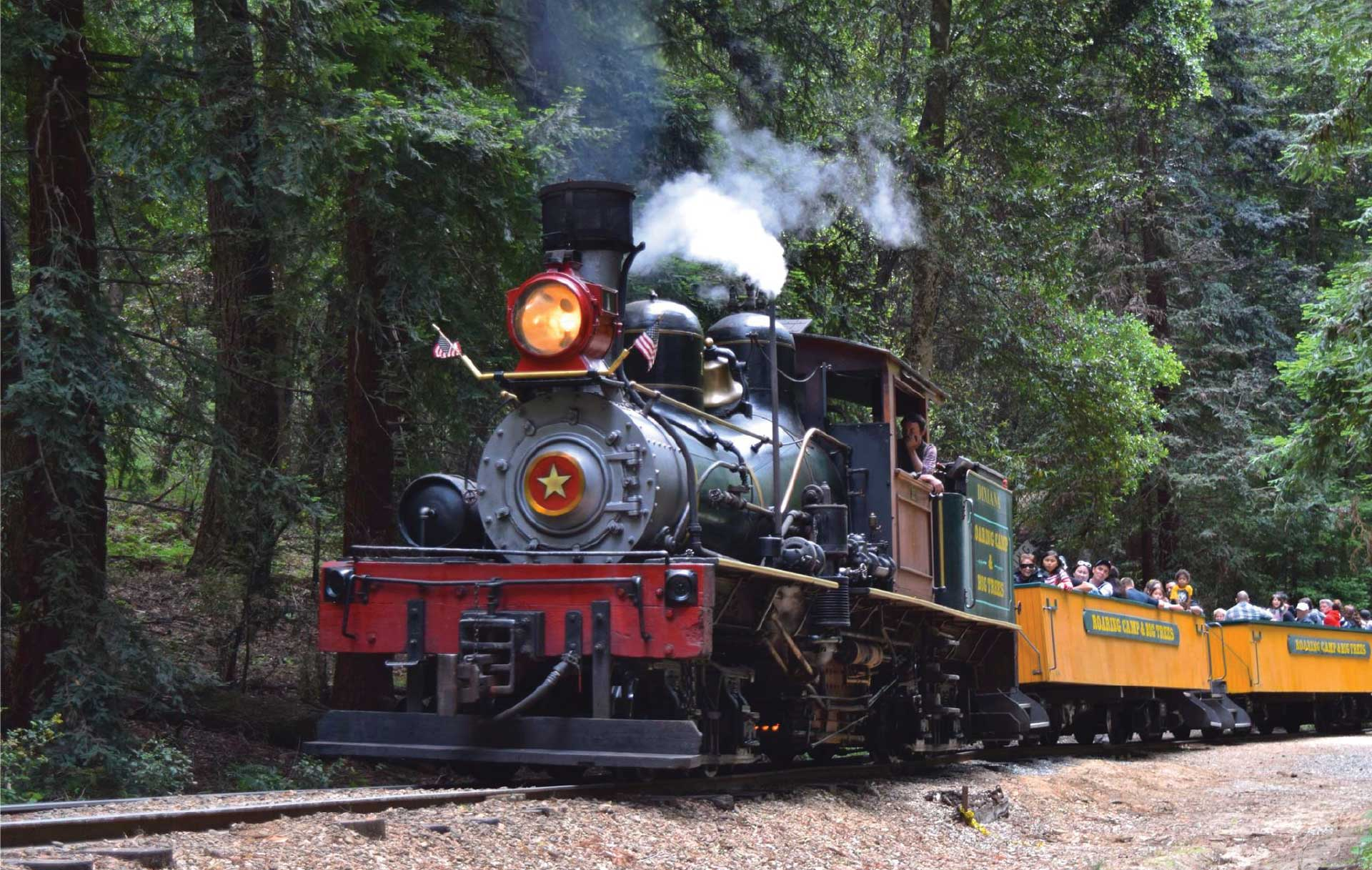 Home - Roaring Camp Railroads